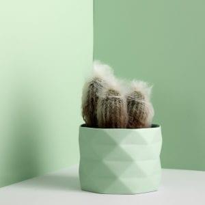 TrineRytterCeramics-urtekrukke-plants-krukke-dansk-design