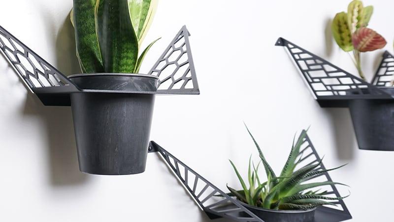 Sådan kan du også bruge dine planter i indretningen