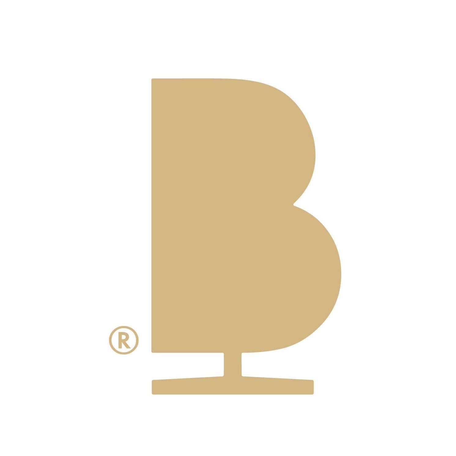 brainchild_logo